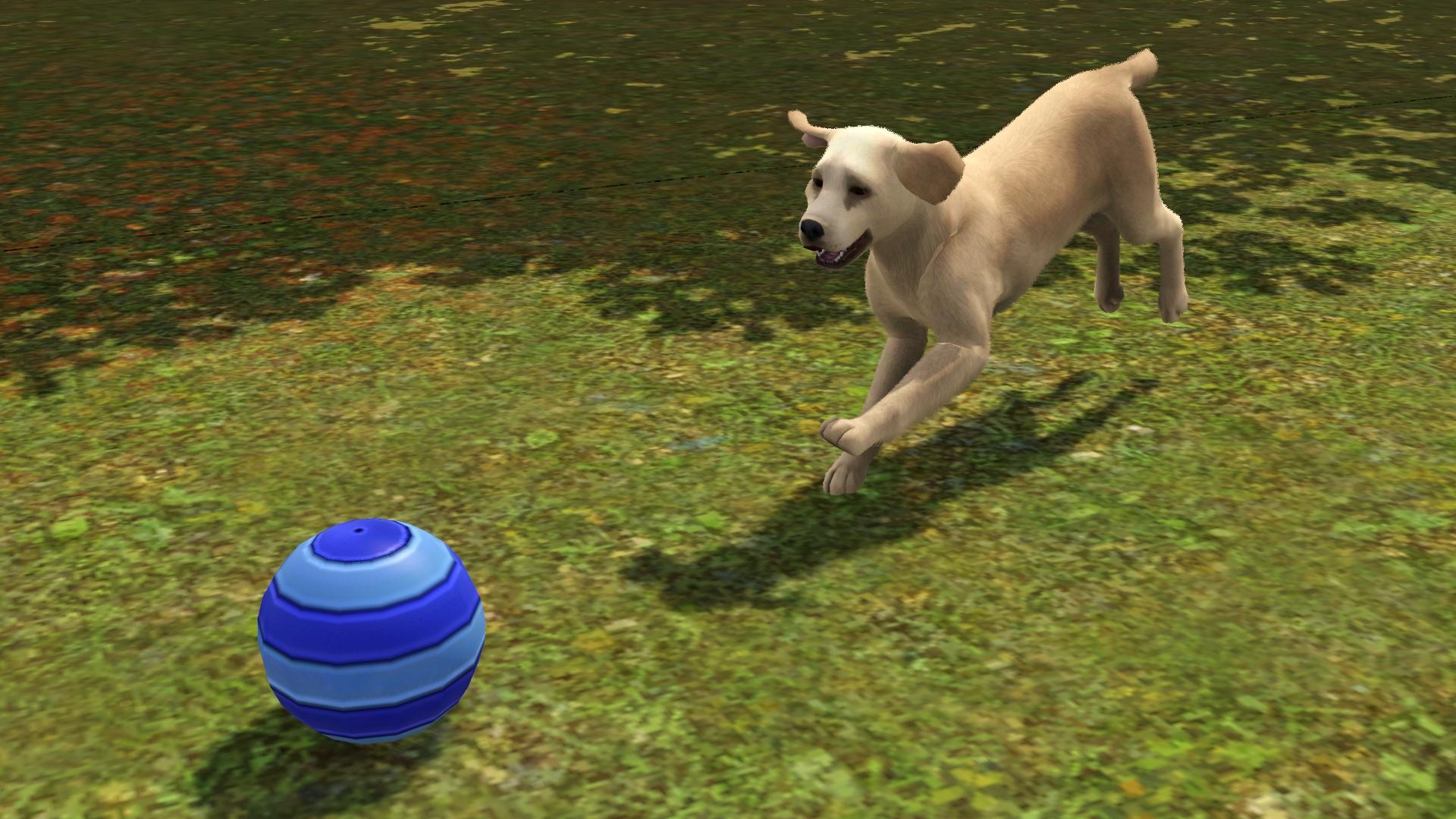 Sims  Pets Dogs Destruction